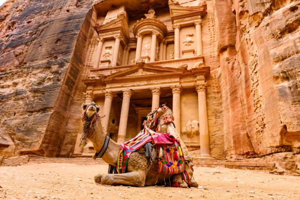 vue spectaculaire de deux beaux chameaux en face d'al khazneh (le trésor) à petra. petra est une ville historique et archéologique du sud de la jordanie. - jordan photos et images de collection