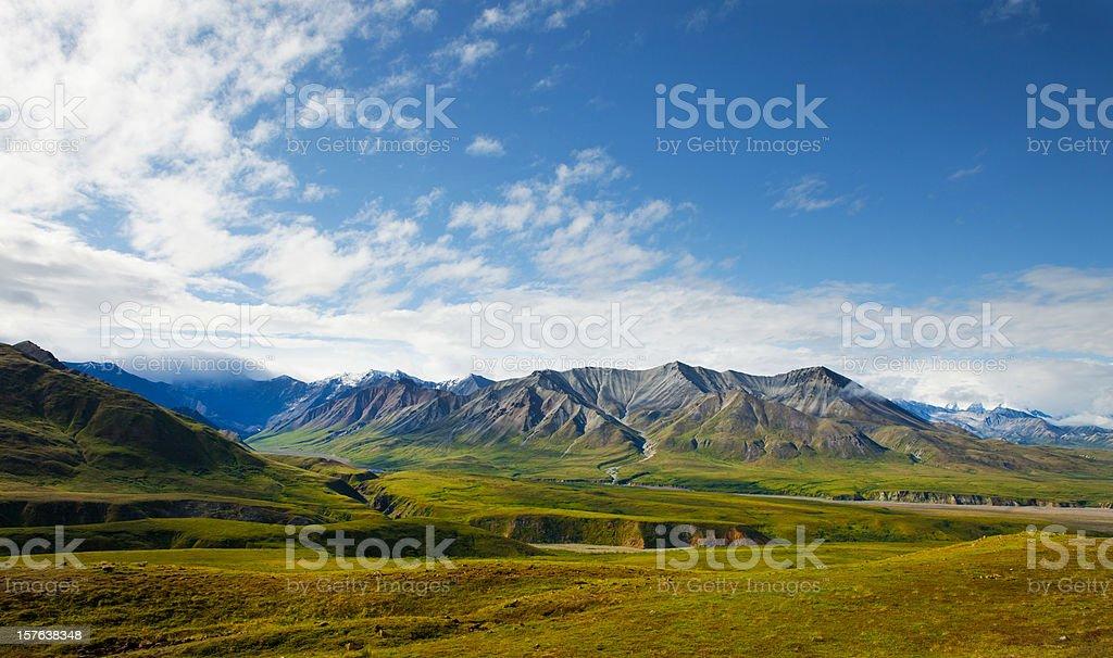 Spectacular wiev of Denali National park,Alaska.USA stock photo