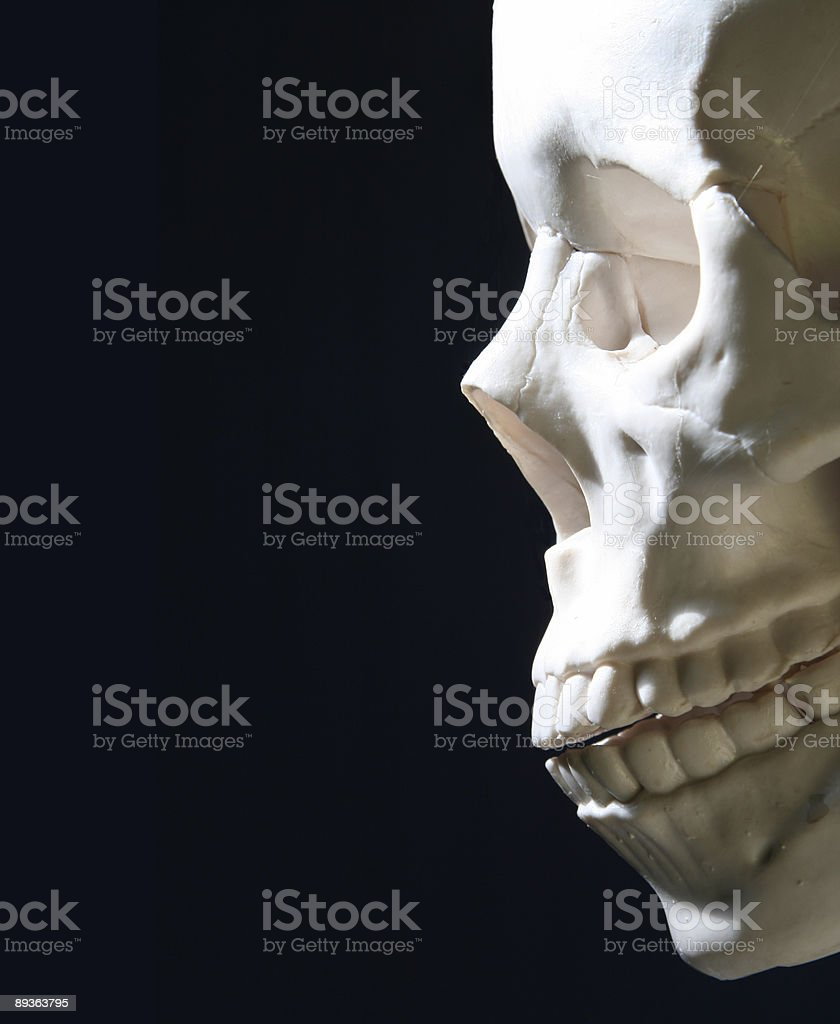 Spectre Of Death Stock Photo & More Pictures of Anatomy   iStock