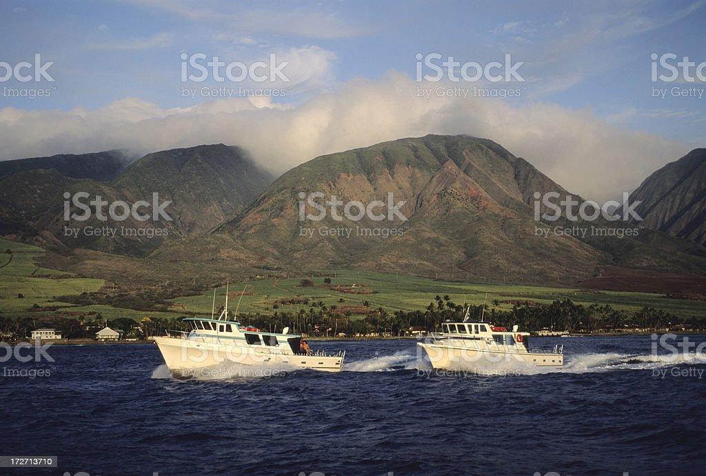 Speed Boats royalty-free stock photo