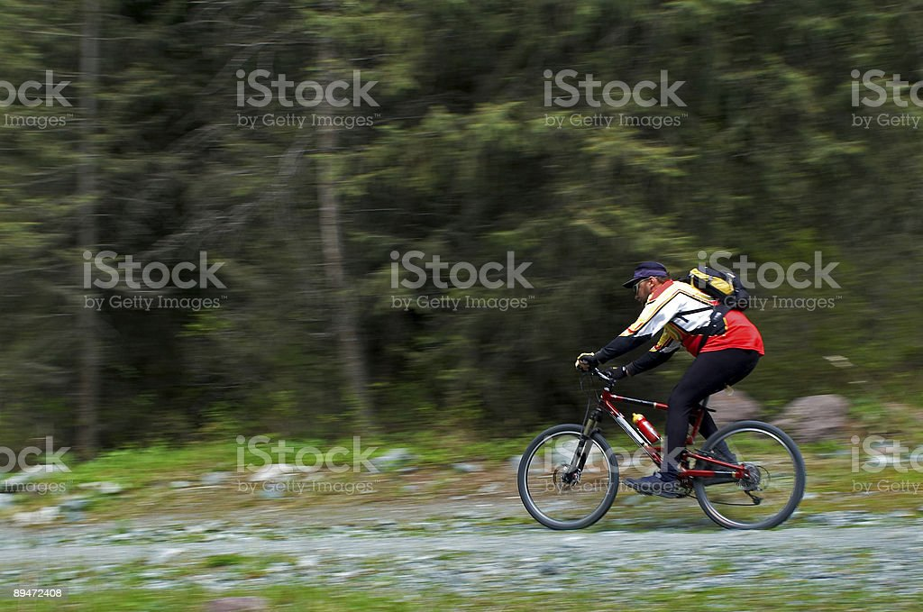 Speed motion mountain biker royalty-free stock photo