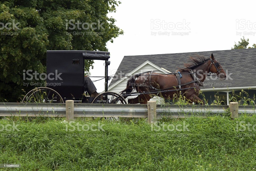 speeding amish stock photo