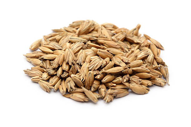 Spelt Spelt grains isolated on white. spelt stock pictures, royalty-free photos & images