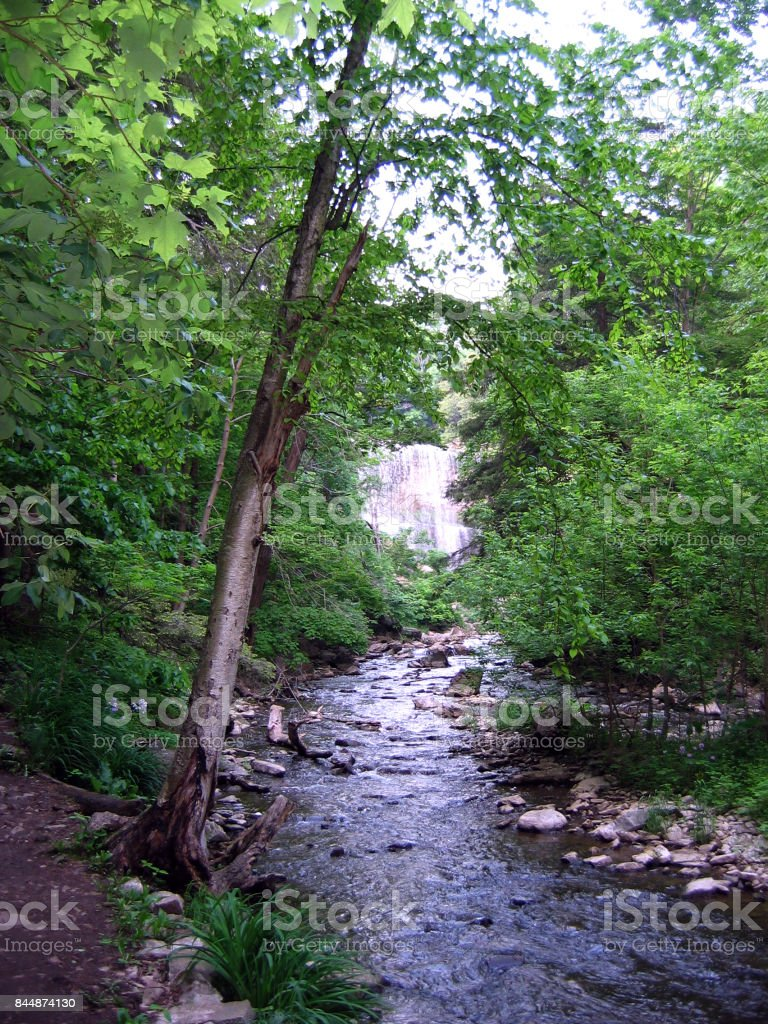 Spencer Creek Gorge and Old Dundas Station Loop stock photo