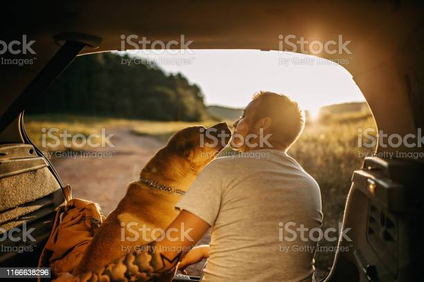 Spending day with dog in nature picture id1166638296?b=1&k=6&m=1166638296&s=612x612&h=injqxovockehedy5fgzx5zczneskqlzohb6jup1sjei=
