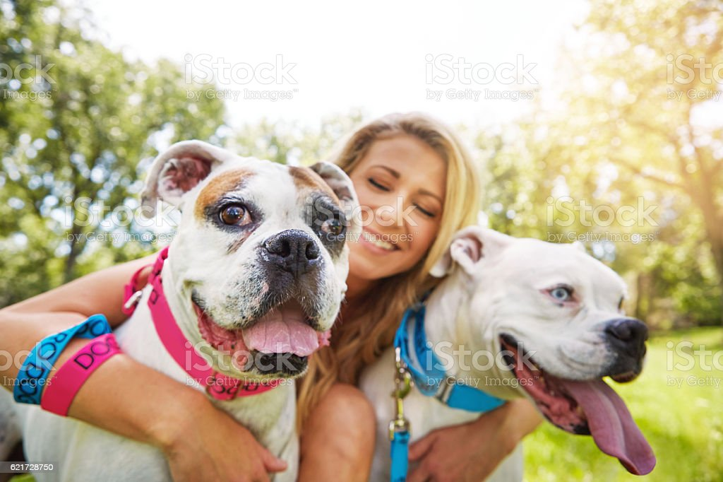 Spending time with a canine friend can bring much joy – Foto