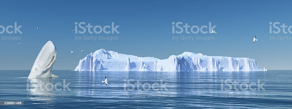 Sperm whale, sea gulls and iceberg stock photo