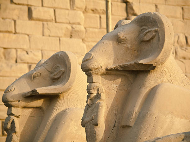 Sphinx in Karnak temple  Amen stock pictures, royalty-free photos & images