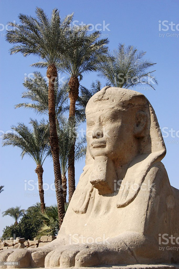 Sphinx, Luxor Temple royalty-free stock photo