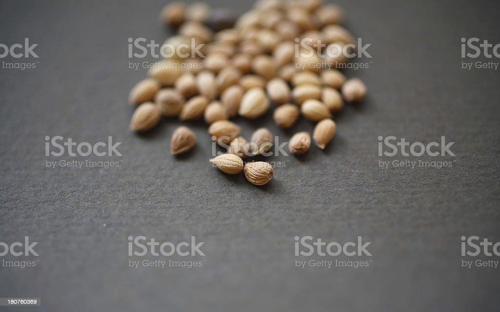 Spice Rack: Mahlab stock photo