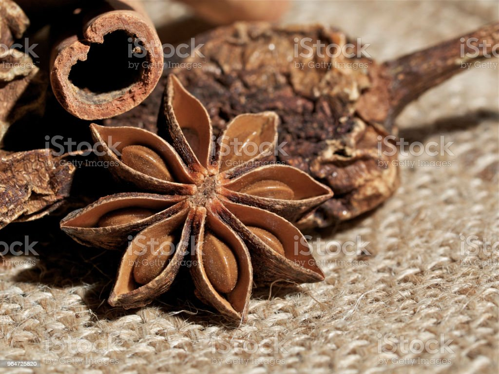 spice, star anise royalty-free stock photo