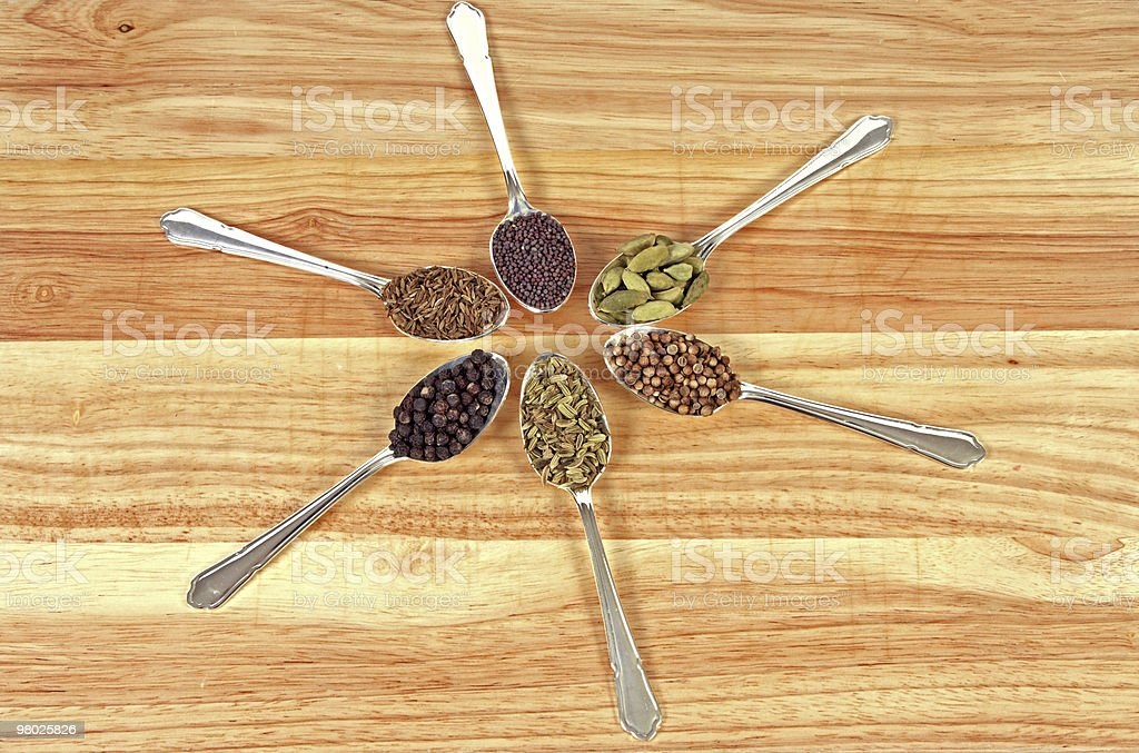 Spice Wheel royalty-free stock photo