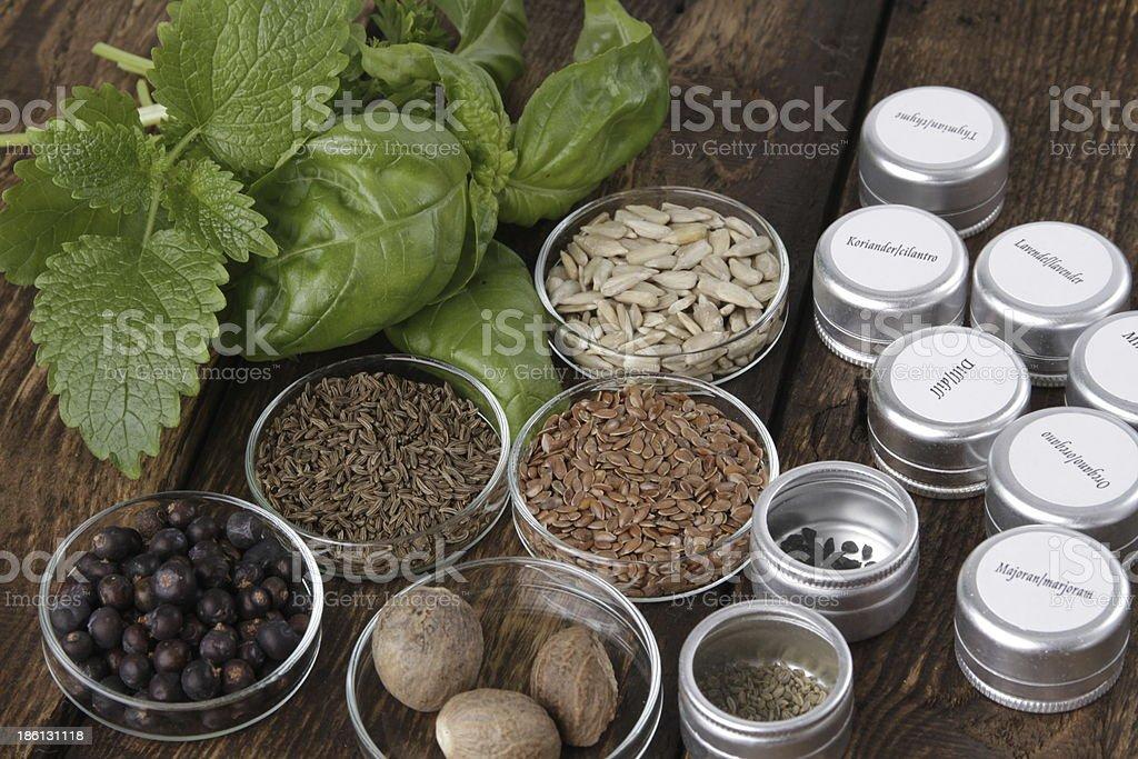 spices surtido - foto de stock