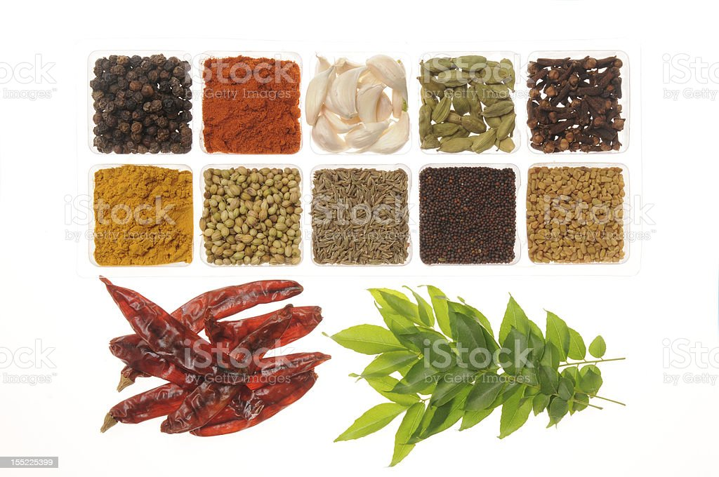 Spices from India royalty-free stock photo