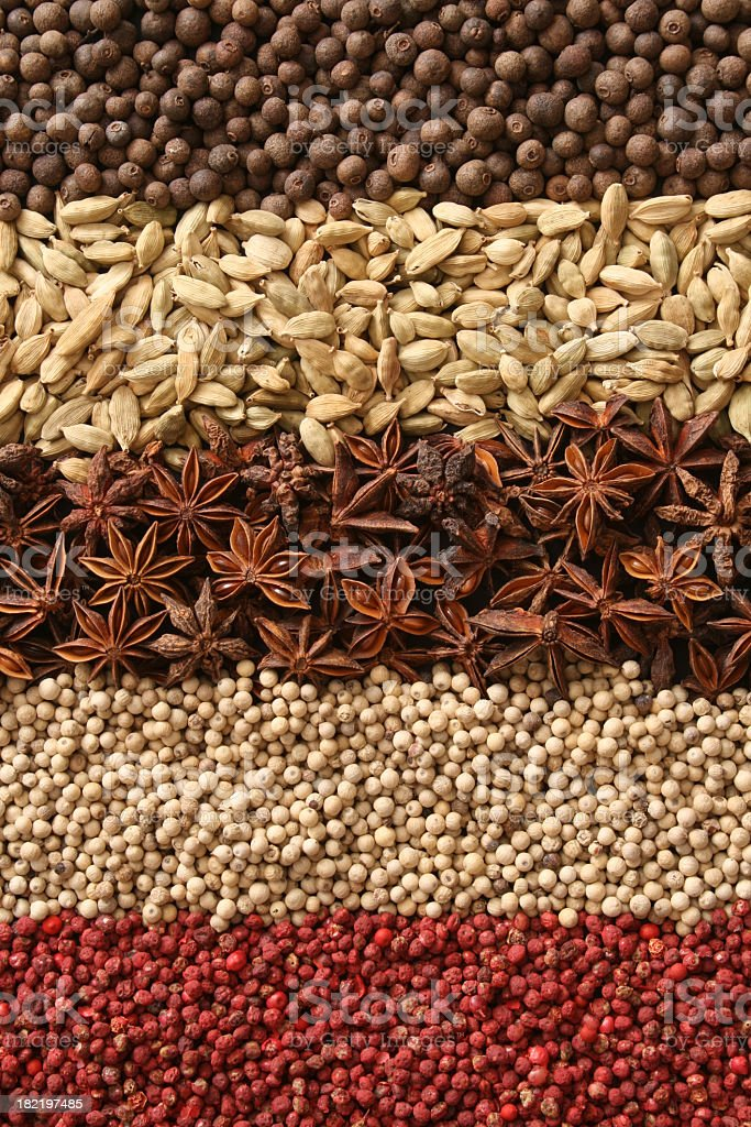 Spices in rows royalty-free stock photo