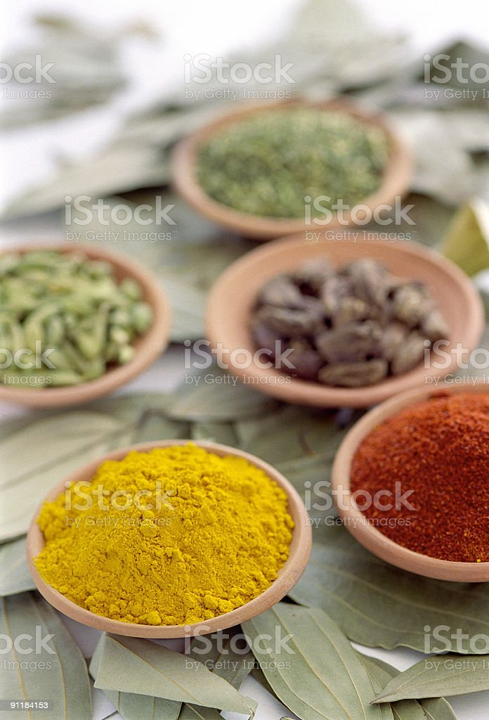 Spices on scattered leaves royalty-free stock photo