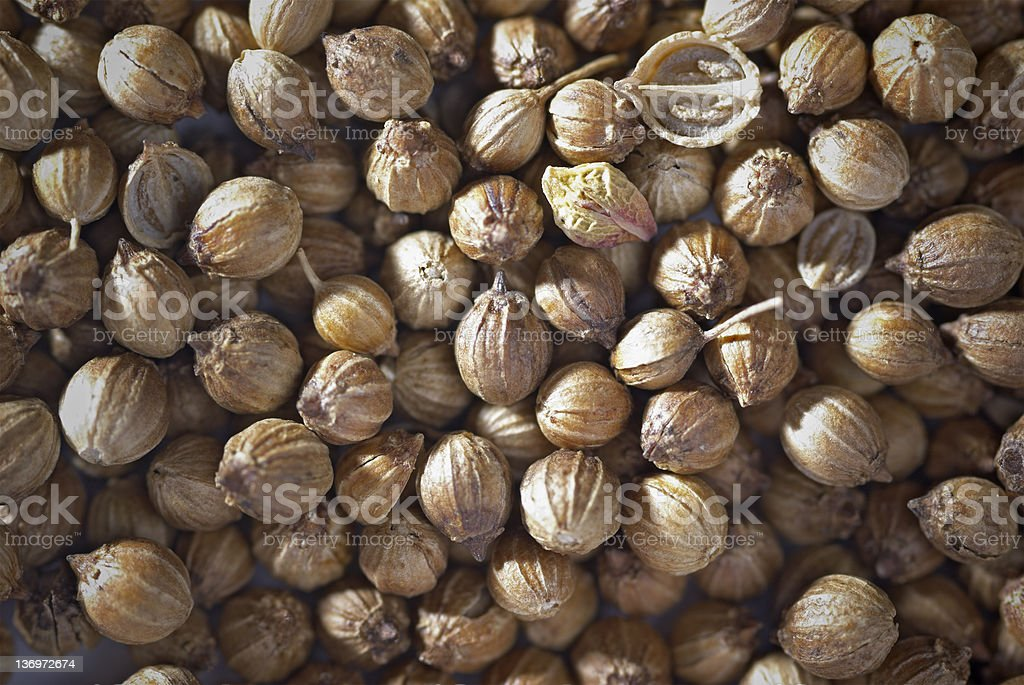 Spices - Seeds Background royalty-free stock photo