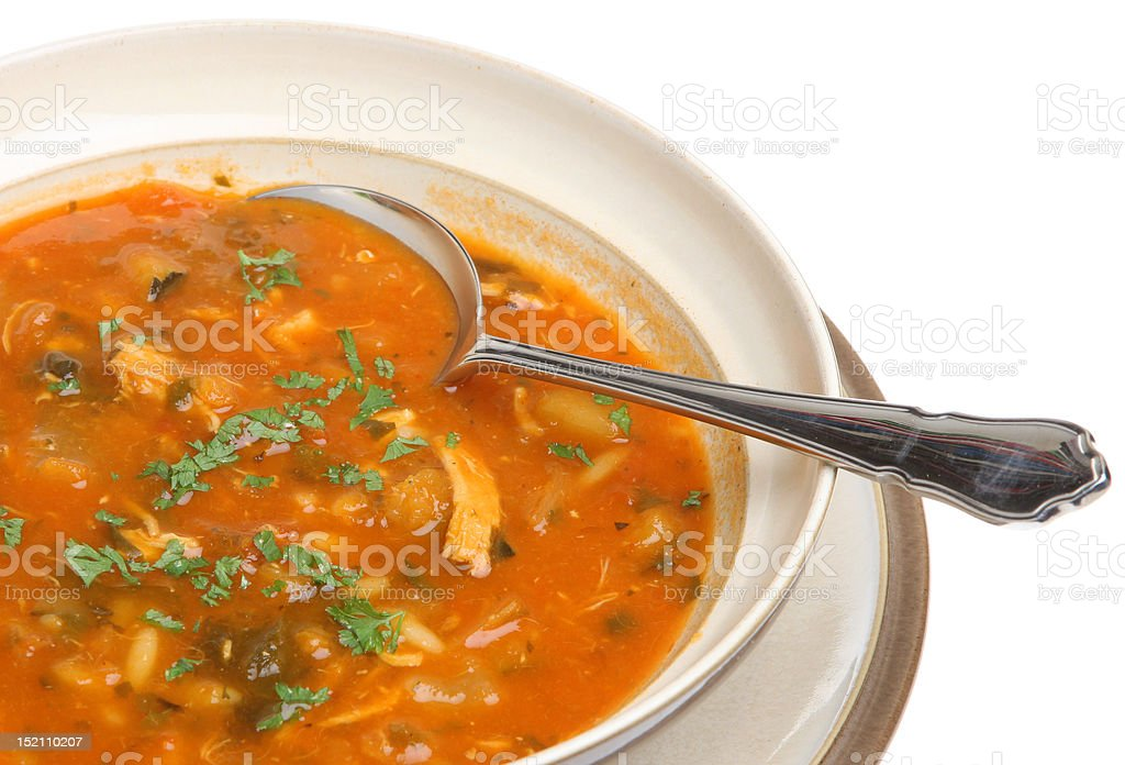 Spicy Chicken Soup stock photo