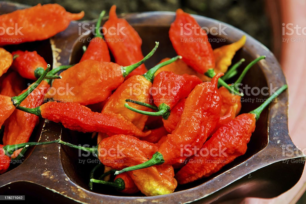 Spicy chili in the world. stock photo