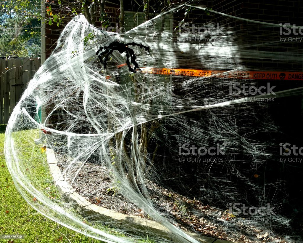 spider and web halloween decorations royalty free stock photo