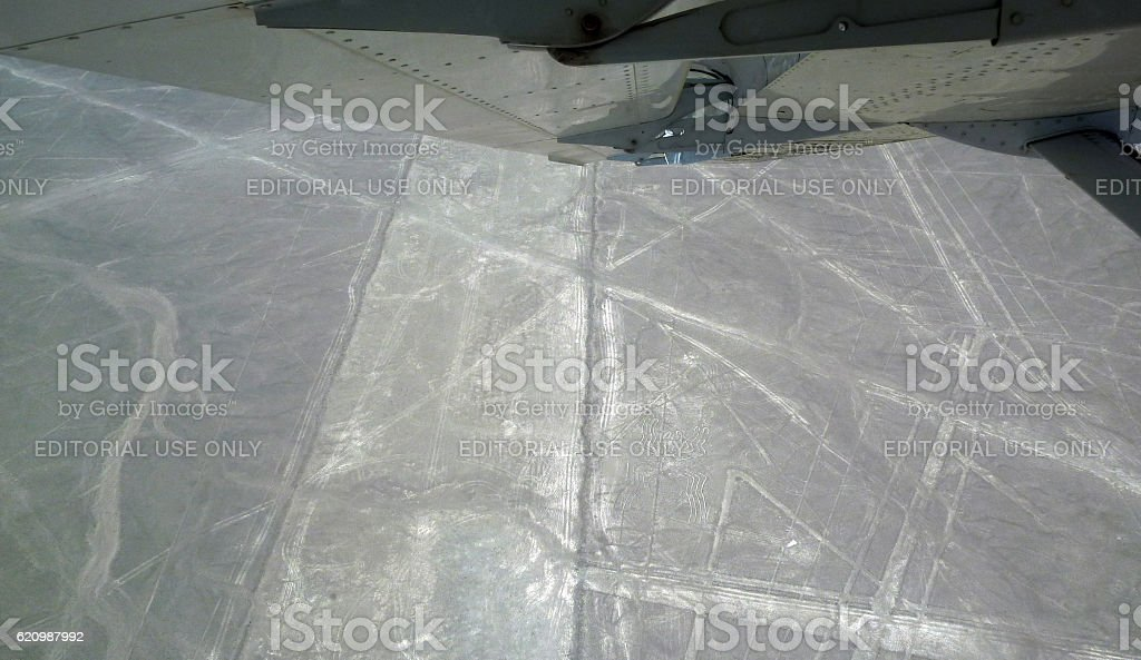 Spider figure and geometric shapes in the Nazca Lines stock photo