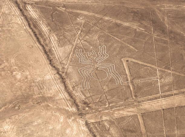 Spider, Nazca Lines, Peru stock photo