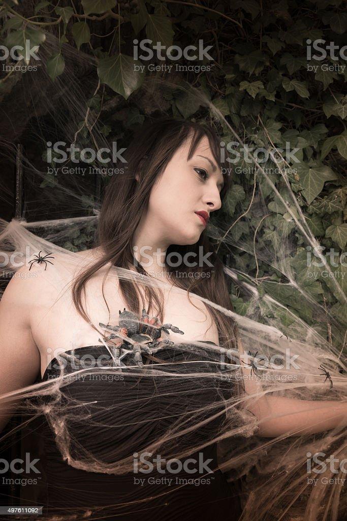 Spider Queen II stock photo