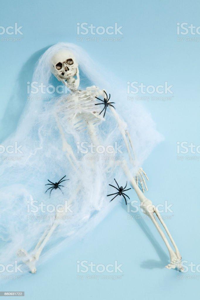 Esqueleto De La Araña Stock Foto e Imagen de Stock 860931722 | iStock