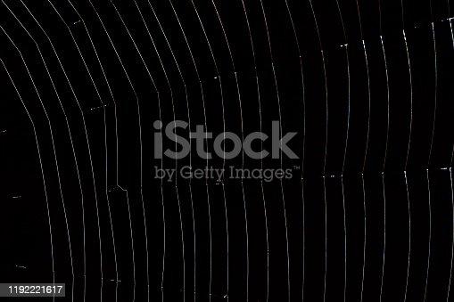 Spider web - black background.