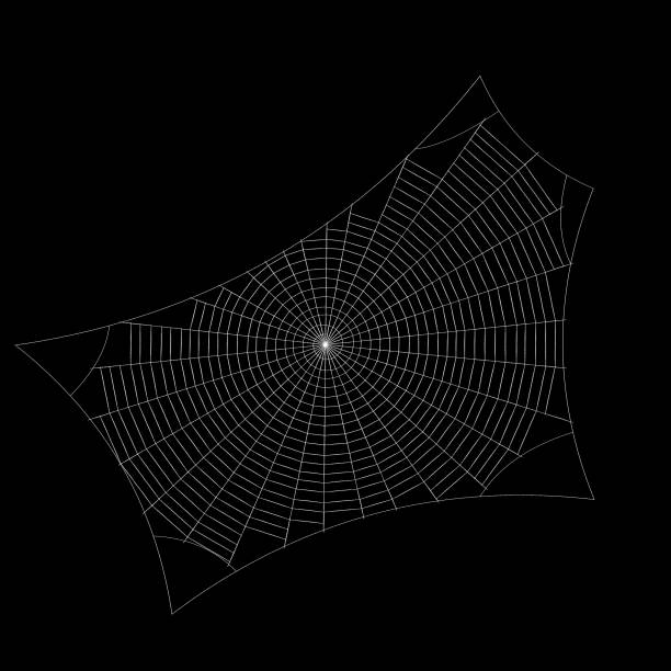 Spiderweb. Isolated on black background. Sketch illustration. – Foto