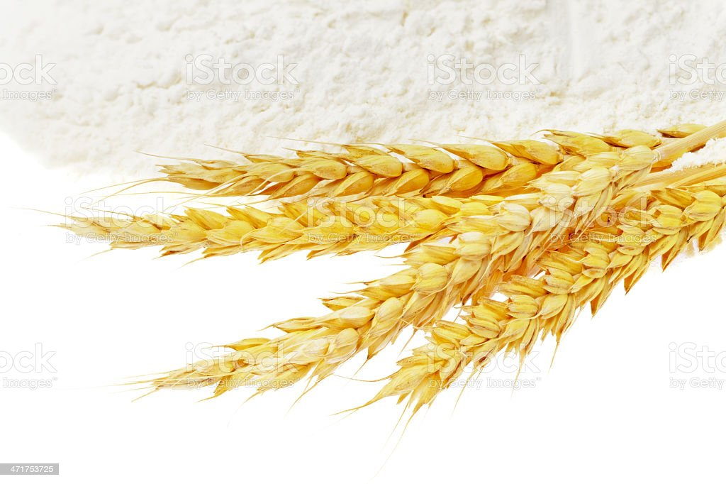 Spikelets of wheat on flour spillage.Isolated. royalty-free stock photo