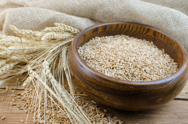 Spikes Of Wheat And Refined Grains Stock Photo - Download
