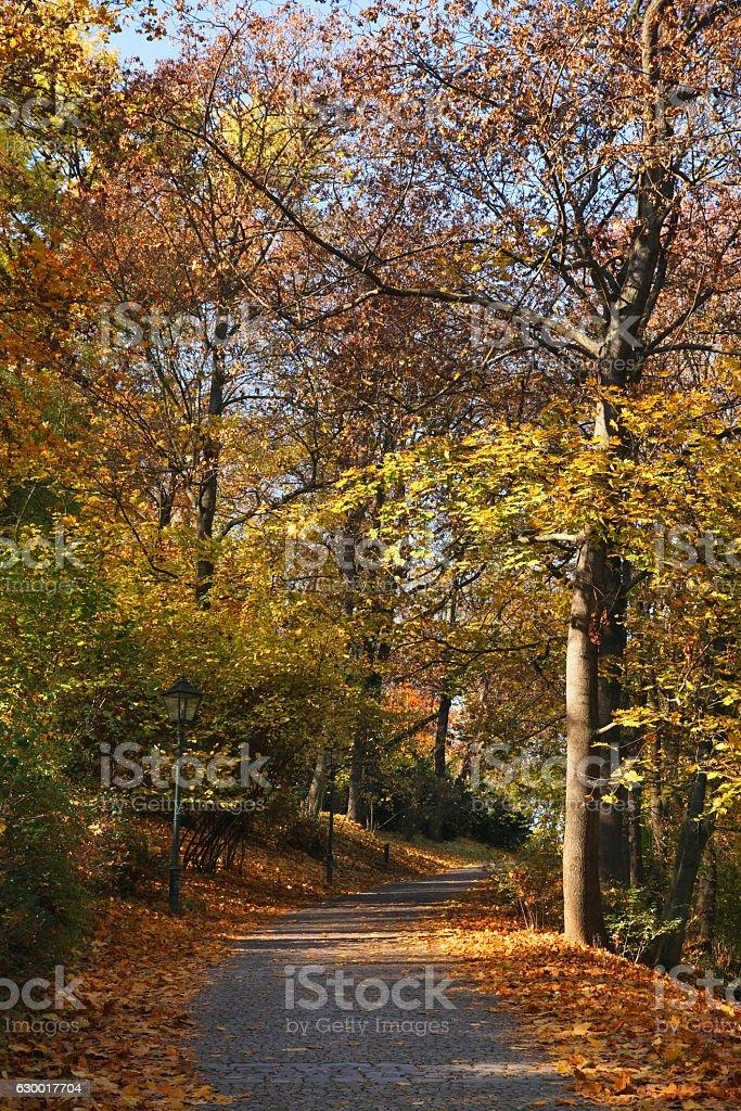 Spilberk park in Brno. Czech republic stock photo