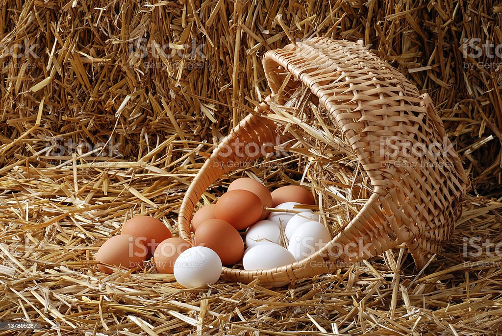 Spilled basket of eggs stock photo