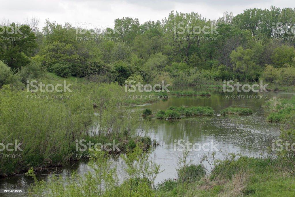 Spillway Creek royalty-free stock photo