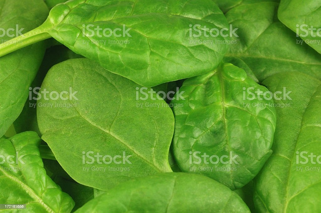 Spinach background royalty-free stock photo