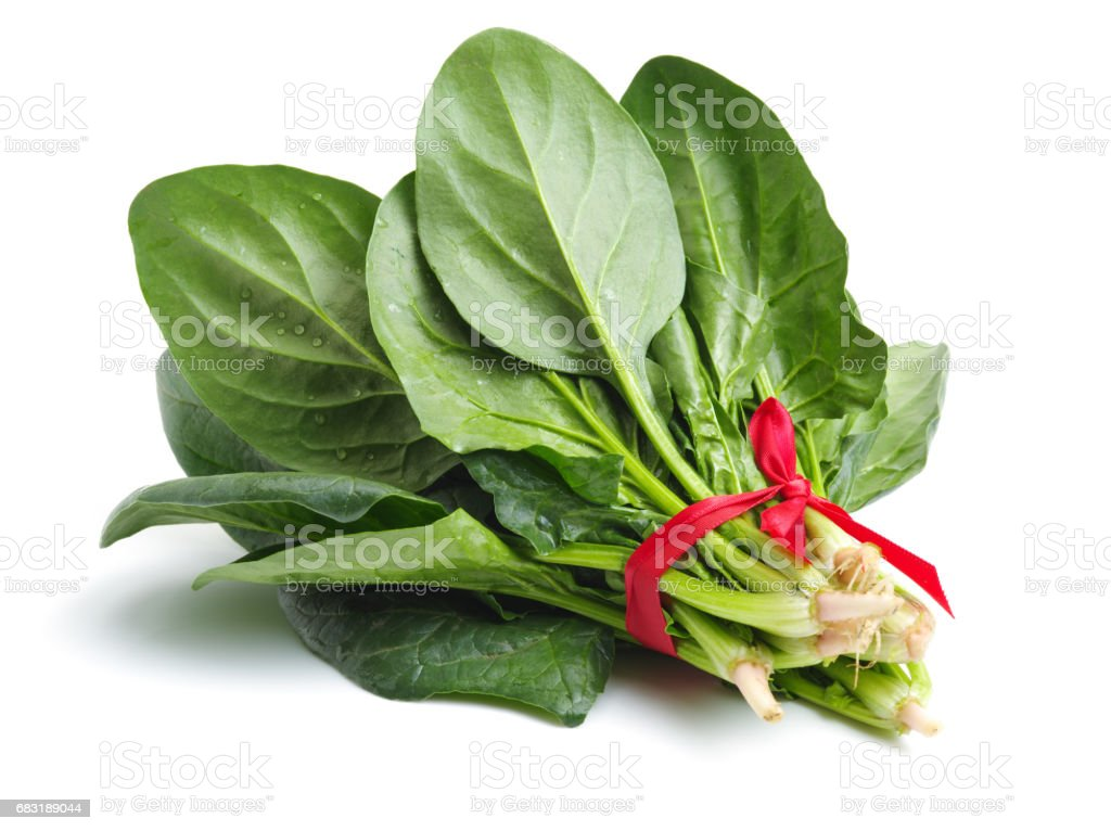 Spinach bunch isolated on white background 免版稅 stock photo