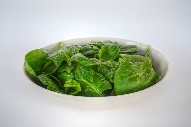 Spinach in White Bowl stock photo