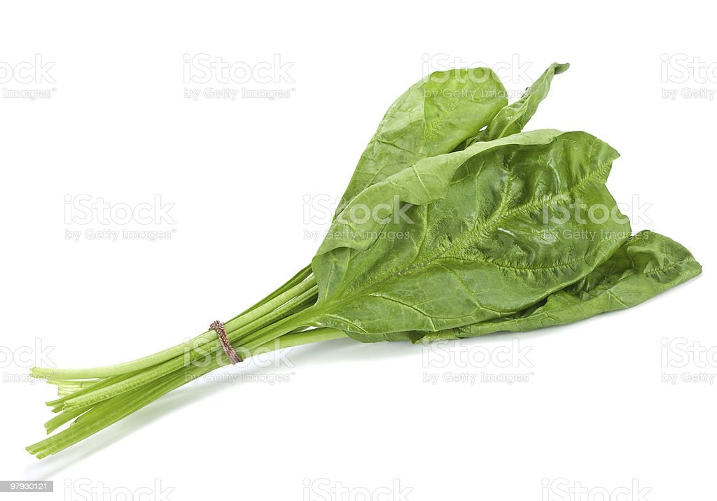 Spinach leaf royalty-free stock photo