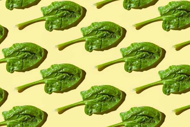 Spinach leaves picture id1061414502?b=1&k=6&m=1061414502&s=612x612&w=0&h=in9e4d6py2fv pafoa69cgwdqwsbyeokfksexqigask=