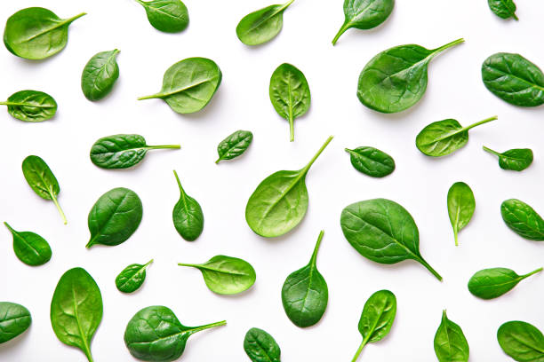 Spinach pattern background on white. Top view stock photo