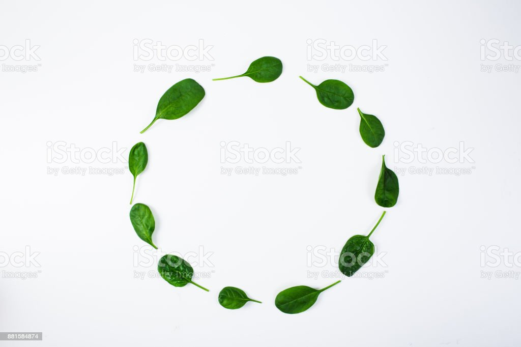 Spinach pattern on white background. Top view stock photo