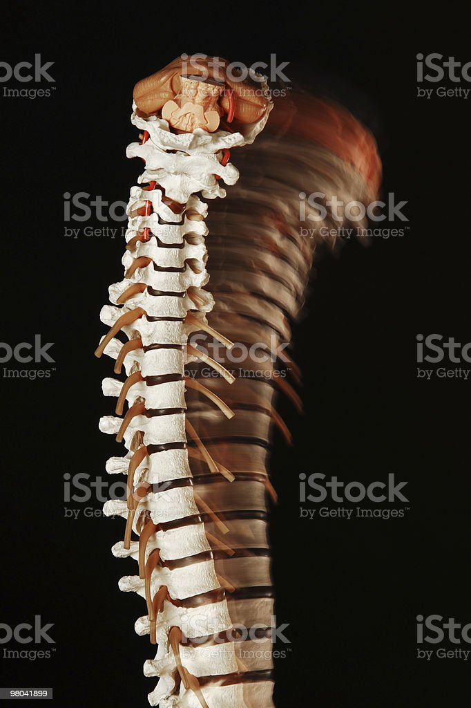 Spine movement royalty-free stock photo