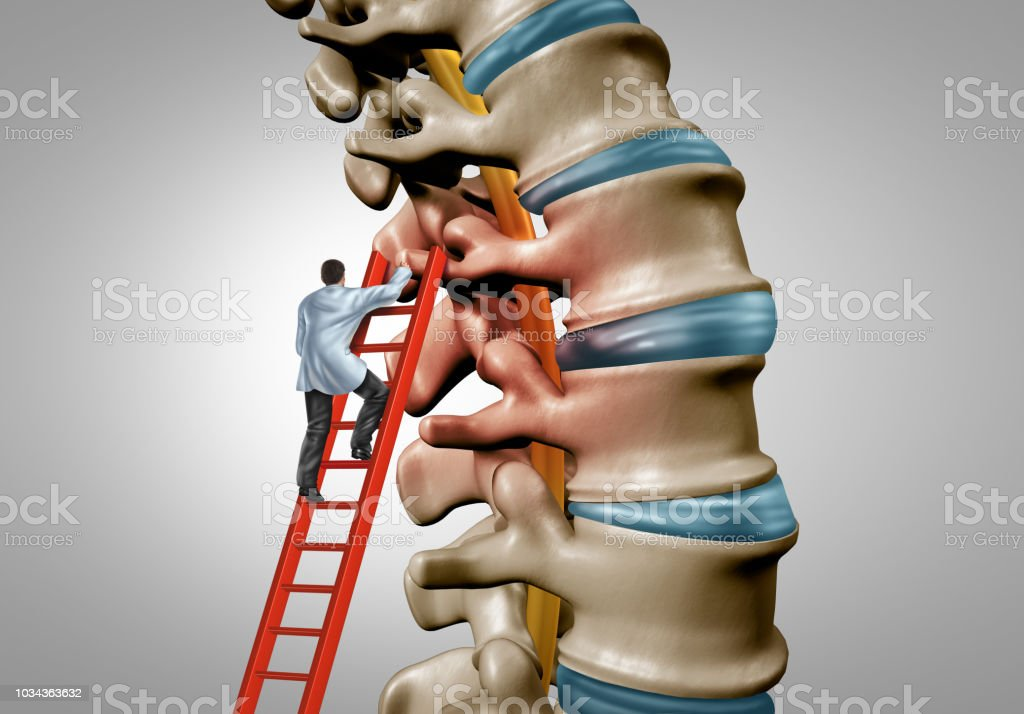 Spine Therapy stock photo