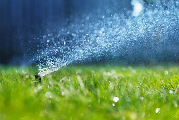 Spinkler Head A sprinkler head spraying water on a fresh green lawn. irrigation equipment stock pictures, royalty-free photos & images