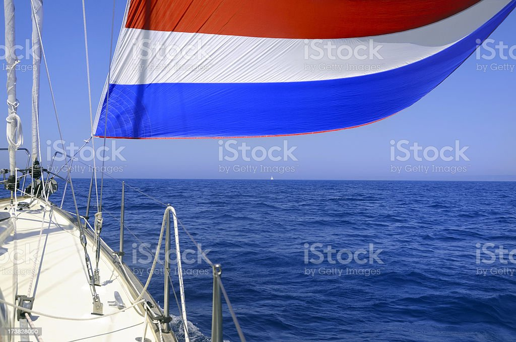 Spinnaker in the sun royalty-free stock photo