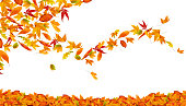 Colorful autumn leaves spinning in the wind...