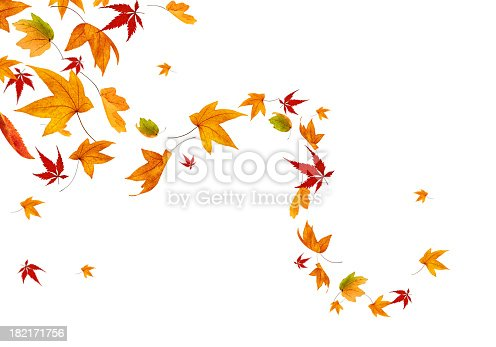 Autumn leaves spinning in the wind.