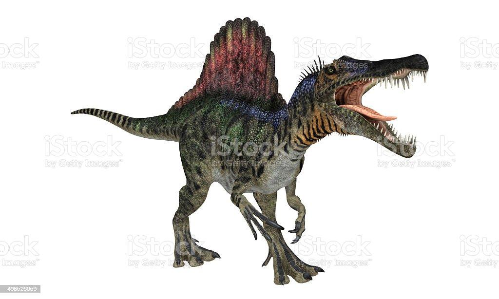Spinosaurios Isolated stock photo