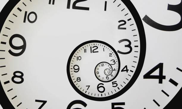 spiral clock - gastropoda zdjęcia i obrazy z banku zdjęć